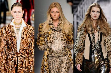 Kobieta kot - cętki w modzie