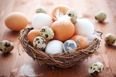 Ekologiczna Wielkanoc