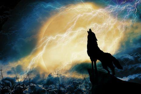 Co wiesz o wilkołakach?
