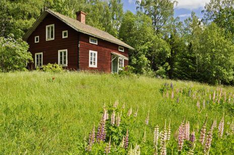 Mały domek na wsi
