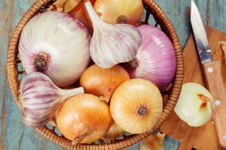 Syrop z cebuli – lek idealny na kaszel