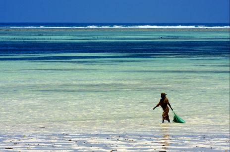 Zanzibar - tam, gdzie pieprz rośnie