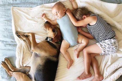 THEO I BEAU niezwykła przyjaźń dziecka z psem