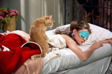 Drzemki to klucz do SZCZĘŚCIA: ile trzeba spać?