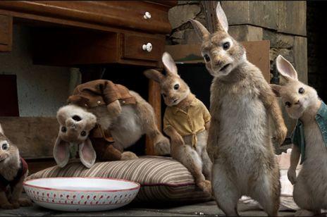 """Zamiast filmu """"Piotruś królik"""" dzieci zobaczyły horror: jak to możliwe?"""