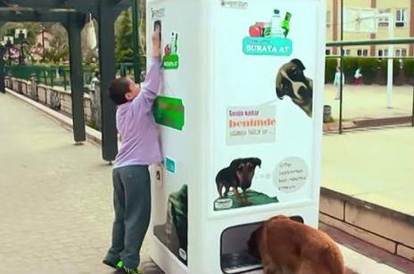 W Stambule wymienisz butelki plastikowe na karmę dla psa