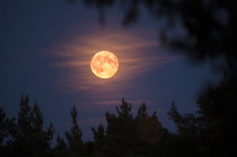"""Zbliża się """"Pełnia Kukurydzianego Księżyca"""". Jak wpłynie na nas ostatnia pełnia lata?"""