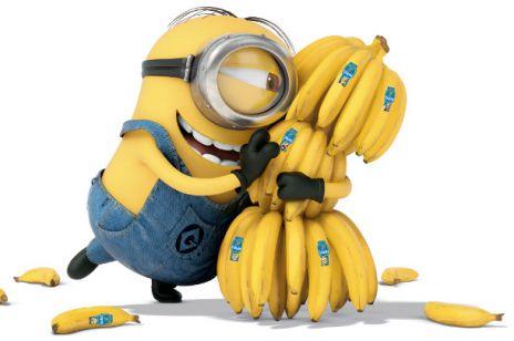Chiquita_Minionek3
