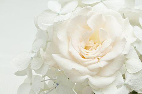 Magia kolorów - biały