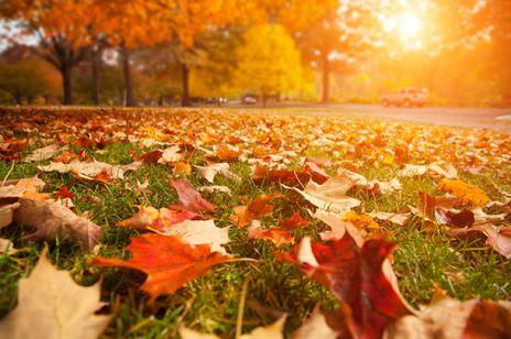 Co przyniesie październik?