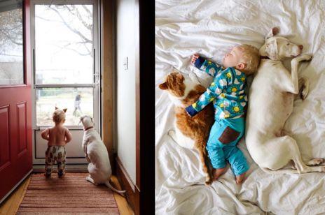 dziecko-pies