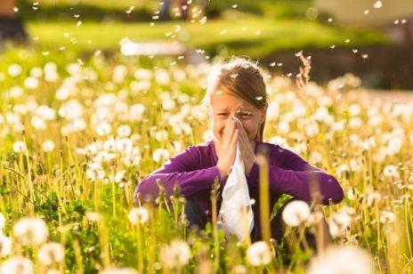 Alergia u dziecka CO PYLI WIOSNĄ
