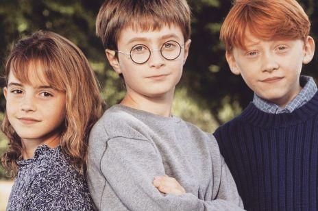 Co stało się z Harry'm, Ronem i Hermioną po upadku Voldemorta?