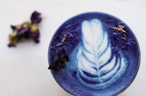Blue matcha - niebieskie matcha latte