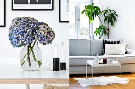 Znana blogerka zdradza jak pięknie urządzić dom. Wystarczy JEDNA zasada