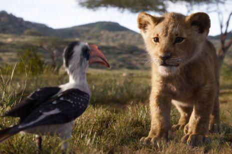 """10 wciągających bajek dla dzieci na Netflix i HBO: wśród nich """"Król lew"""", """"Aladyn"""" i """"Mała syrenka"""""""