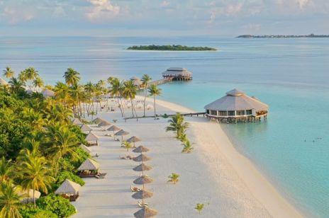 Praca marzeń istnieje. Na rajskich Malediwach szukają sprzedawcy książek. To ostatni dzwonek, by aplikować!