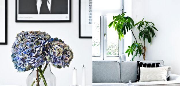 Piękne mieszkanie w stylu skandynawskim