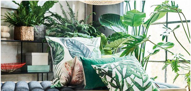 Wnętrze pod palmami: najmodniejszy trend wnętrzarski lato 2018