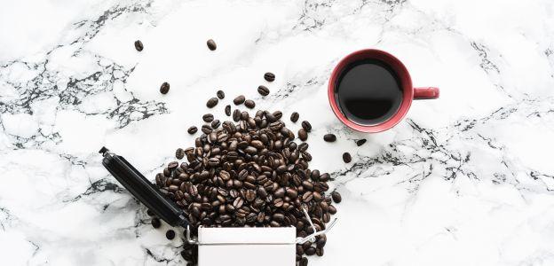 Kawa wydłuża życie?