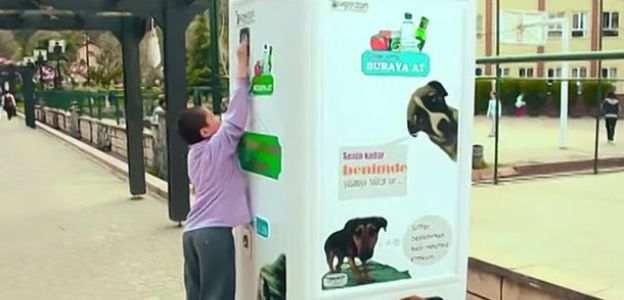 Stambuł: wymienisz butelki plastikowe na karmę dla psów
