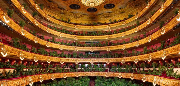 Koncert dla roślin w Barcelonie