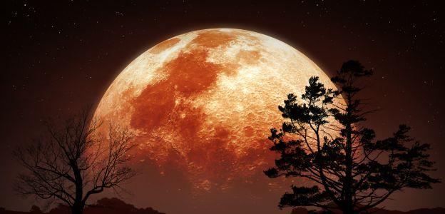 Truskawkowy Księżyc już niedługo na niebie: zdziwisz się, jak Czerwony Księżyc wpłynie na twoje życie