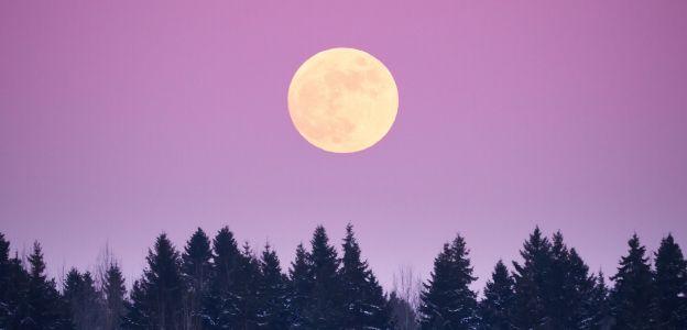 Listopadowa pełnia i zaćmienie Księżyca 30 listopada. To zjawisko wpłynie mocno na nas!