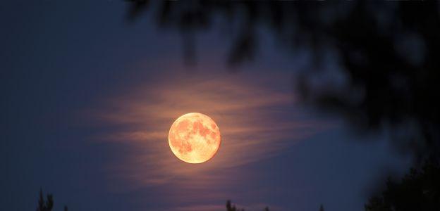 Pełnia Zimowego Księżyca to 13 pełnia w tym roku. Jak skorzystać z oczyszczających mocy tego wyjątkowego zjawiska?