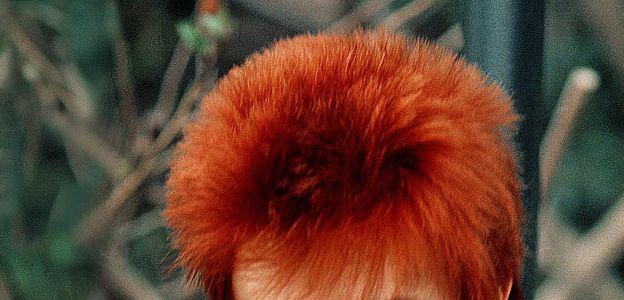5.rocznica śmierci Davida Bowie