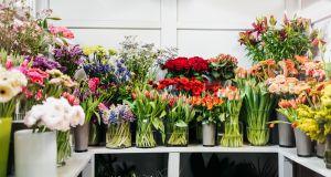 """""""Symboliczna złotówka"""": czynsz za miesiąc wynajmu zszokował właścicielkę kwiaciarni"""