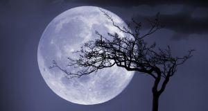 """""""Pełnia Wilczego Księżyca"""" już w styczniu na niebie: będziesz zaskoczona, jak """"Lodowy Księżyc"""" na Ciebie wpłynie"""