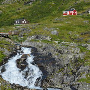 3. Norwegia