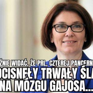 Janusz Gajos krytykuje Kaczyńskiego - memy