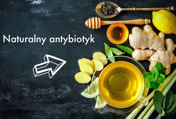 antybiotyk100