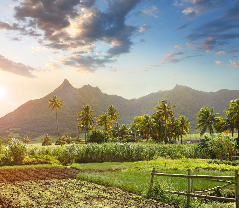 Mauritius: wakacje. Dlaczego warto pojechać?