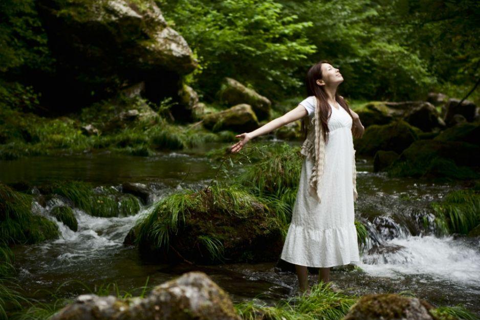 Shinrin-yoku - japońskie kąpiele leśne