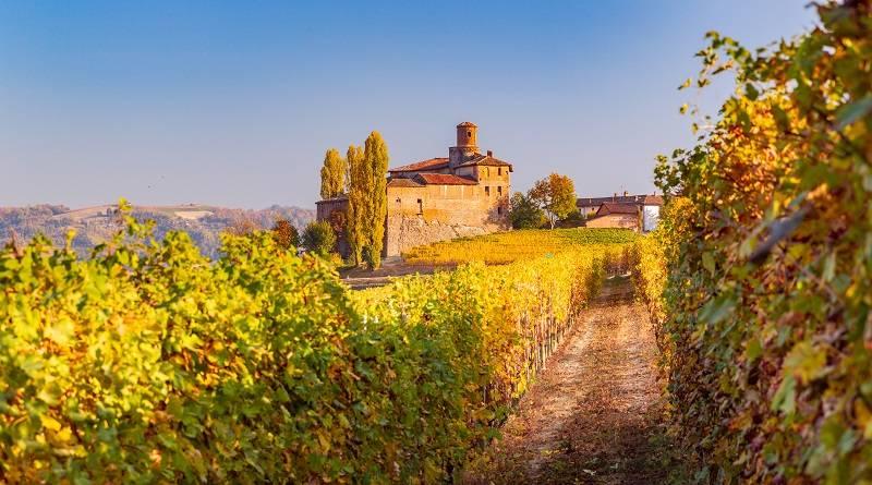 """Piemont, dolina Langhe - Włoskie wakacje z Frances Mayes. """"Pod słońcem Italii"""" to perełka wśród przewodników"""